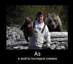 Малко мече, голяма мечка