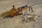 На лов за зайци