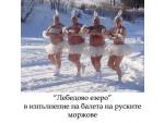 Лебедово езеро в изпълнение на руски балет