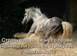 Мъдра мисъл на Чингис Хан