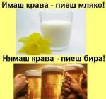 Нямаш крава - пиеш бира
