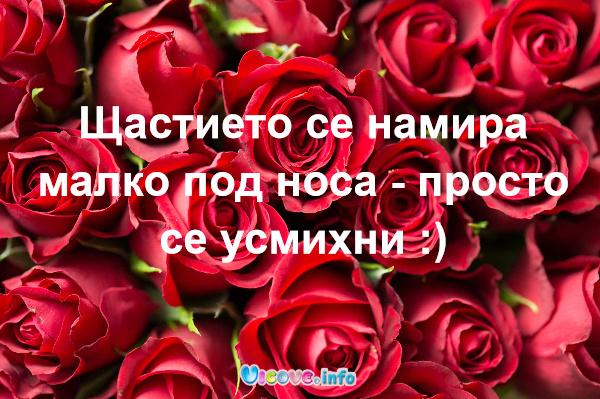 Щастието се намира малко под носа - просто се усмихни :)