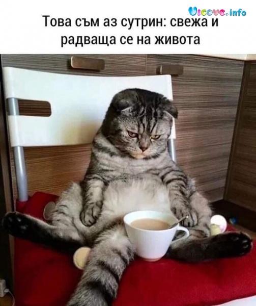 Това съм аз сутрин: свежа и радваща се на живота